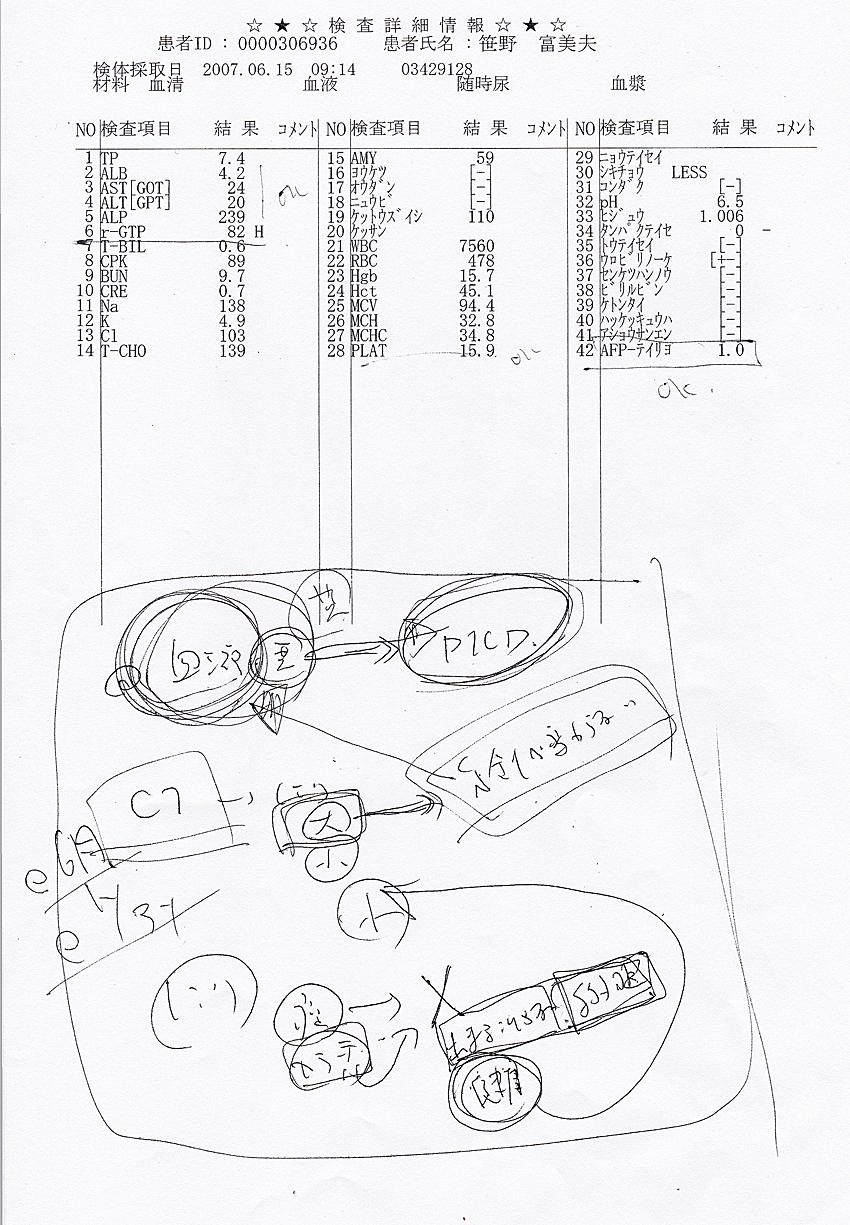 笹野富美夫血液検査(20070615):肝臓がん末期闘病記