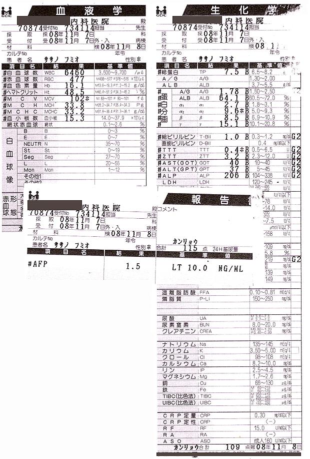 笹野富美夫血液検査(20081107):肝臓がん末期闘病記