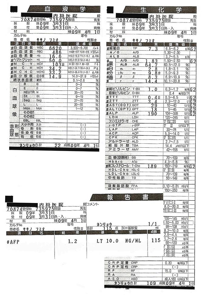 笹野富美夫血液検査(20090331):肝臓がん末期闘病記