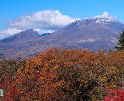 浅間山:肝臓がん末期闘病記